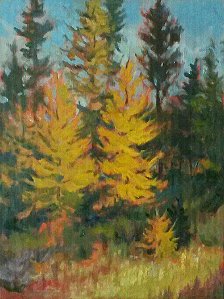 Tamaracks at Sim Bog 12x9 by Matt Kania